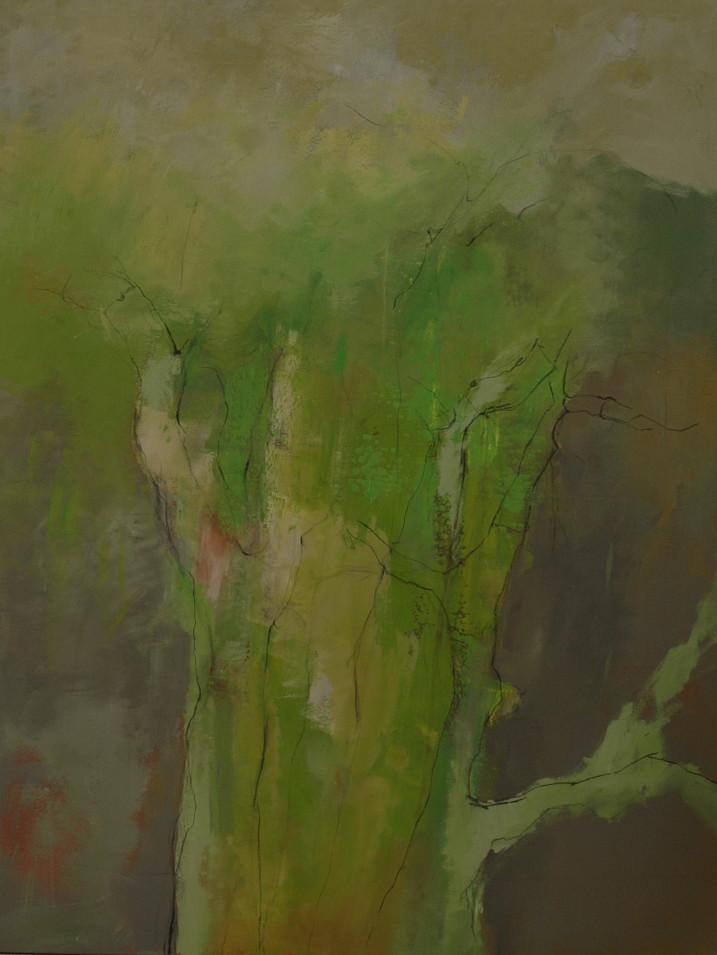 « l'arbre masculin »