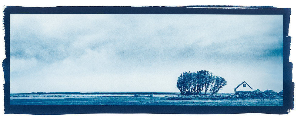 Home // 68 // Mini Cyanotype on Arches Platine Paper