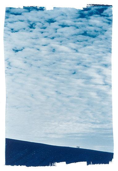 Humbly Walking // 40 // Original Cyanotype Print