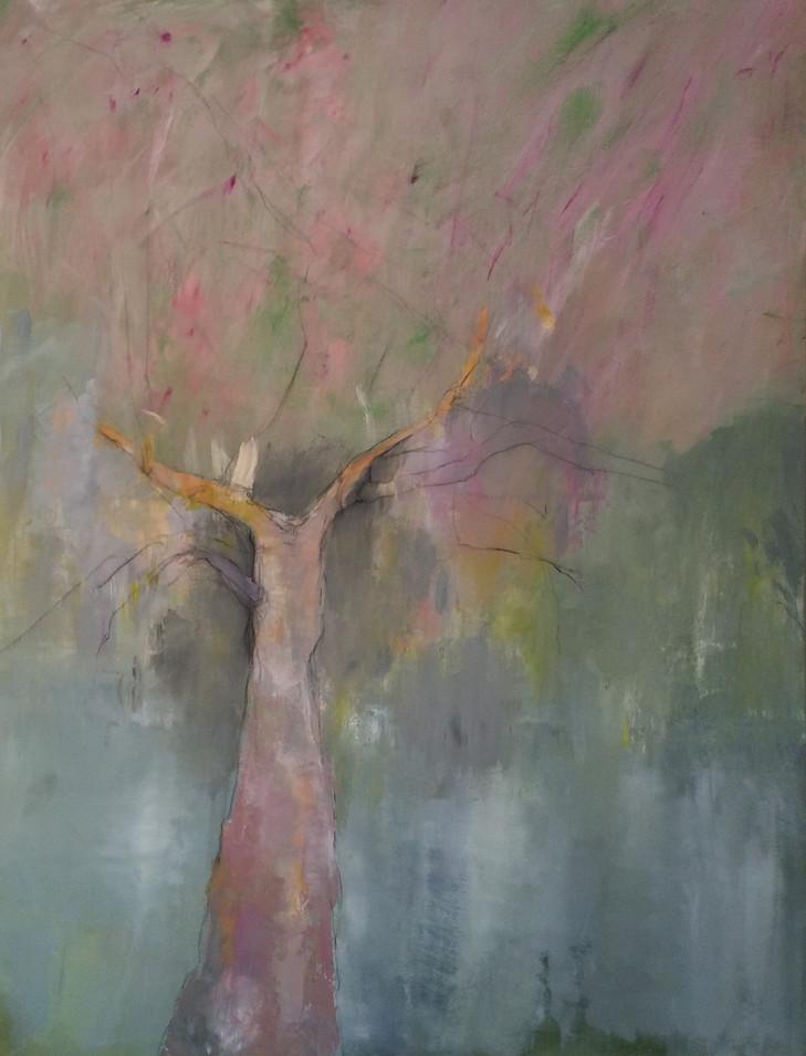 « l'arbre féminin »