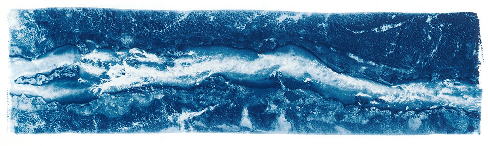 River Run // 39 // Original Cyanotype Print