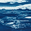 Thumbnail: Black Valley // 13 // Original Cyanotype Print