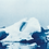 Thumbnail: Glacier Lagoon // 06 // Original Cyanotype Print