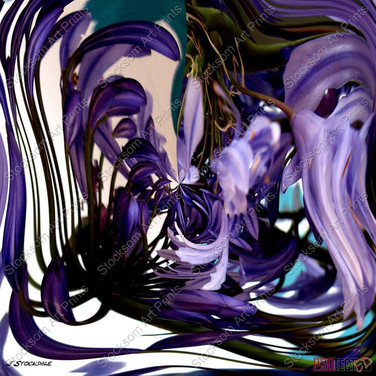 Agapathas swirl.jpg