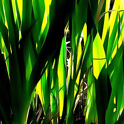 Early Spring 2, Art, Canvas Prints, Abstract Art, Wall Art, Paintings