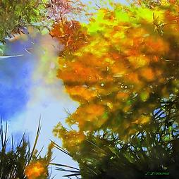 Reflection 4, Art, Canvas Prints, Abstract Art, Wall Art, Paintings