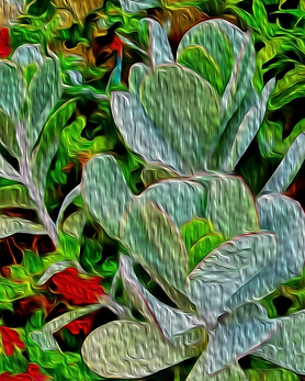 Plants Abstract Prints