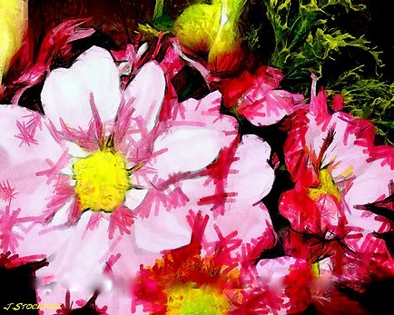 Flowers Abstract Prints