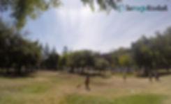 Almagro Park