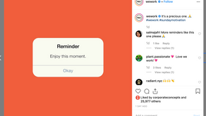 7 Brands Killing the Instagram Game in [2019]
