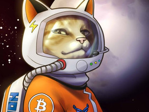 What's the deal with BSV and the space cat?