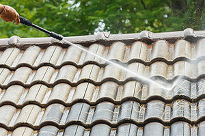 How to keep your Jacksonville roof clean and looking new