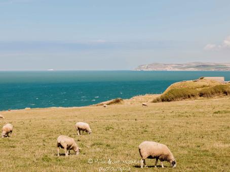 Le littoral des Hauts de France (Ep1/2)       Les Deux Caps: Des panoramas à couper le souffle