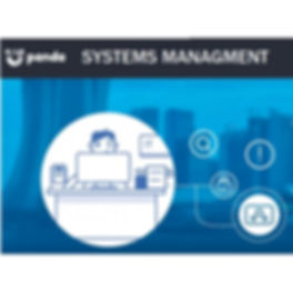 panda-systems-management-1.jpg
