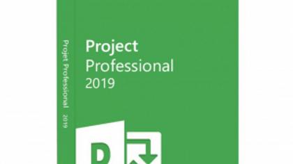 Microsoft Project 2019 Professional (PC)