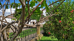 Parque Antonio Ricaurte