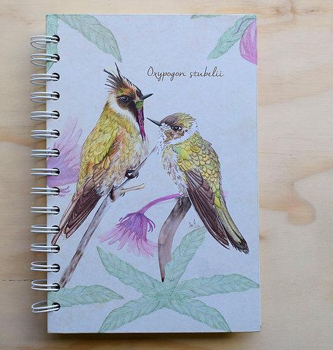 Aledesign + Cuaderno Barbudito de Páramo