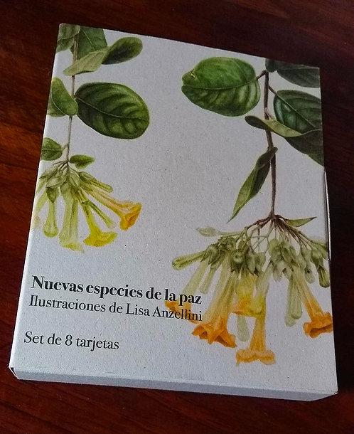 Lisa Anzellini + Caja de tarjetas nuevas especies de la paz