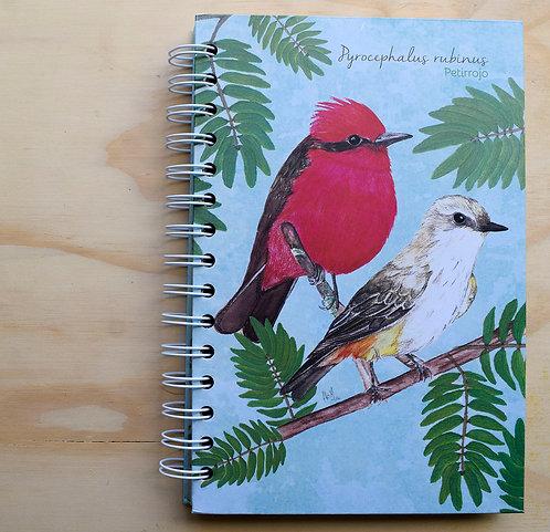 Aledesign + Cuaderno Petirrojo