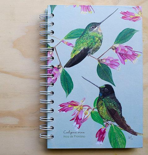 Aledesign + Cuaderno Inca de Frontino