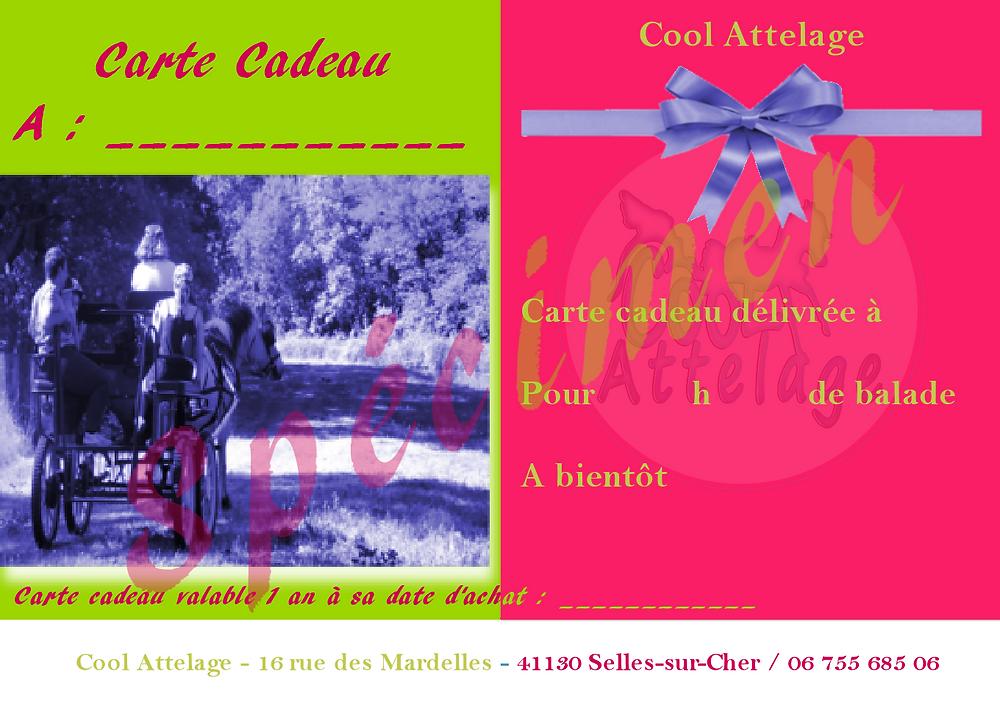 Carte cadeau pour une balade en attelage avec Cool Attelage