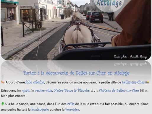 Selles-sur-Cher en attelage