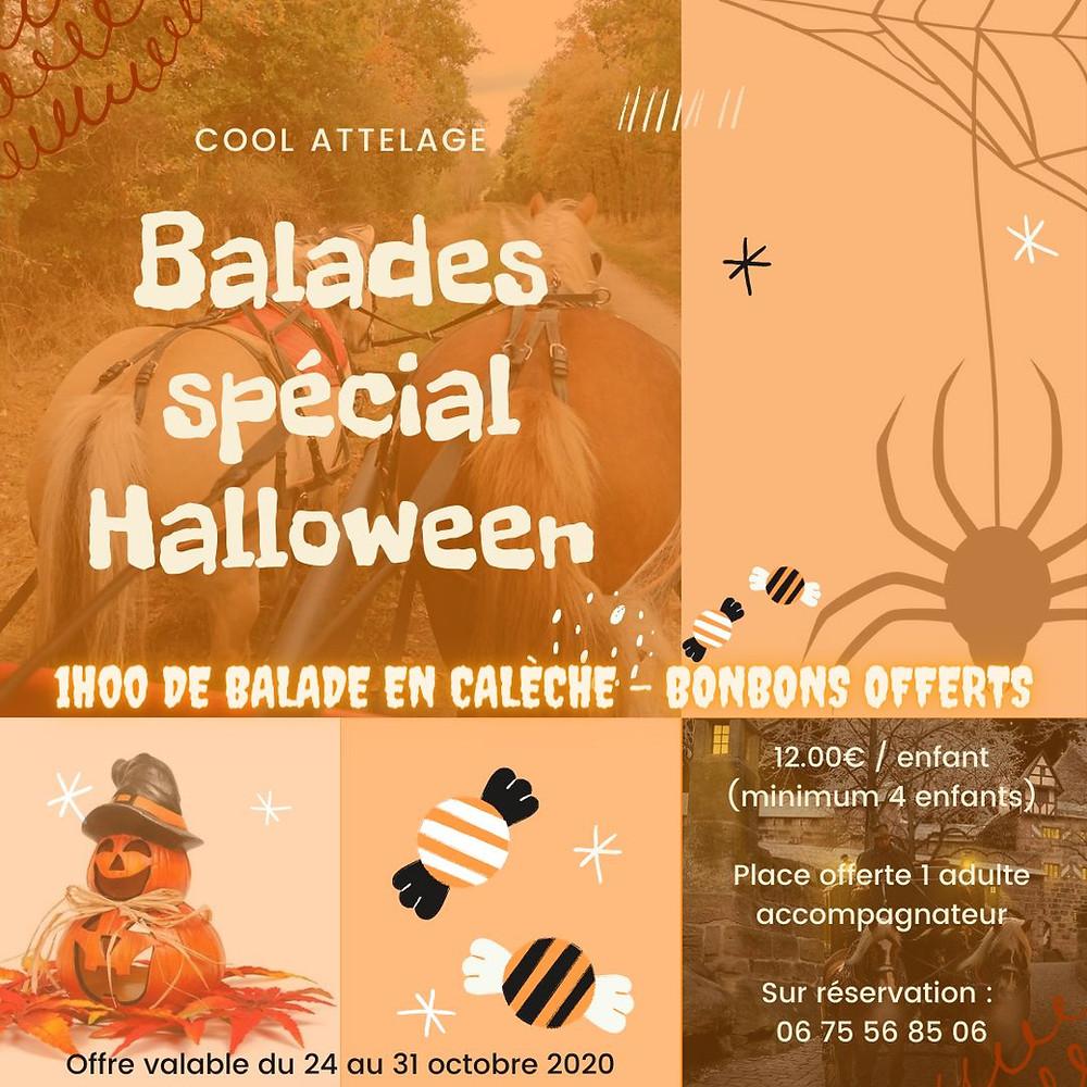 Balade en attelage pour Halloween à Selles-sur-Cher
