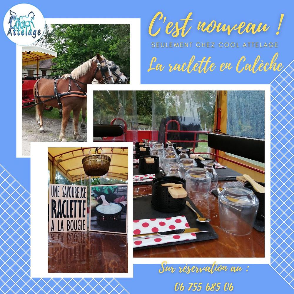 Raclette en calèche à Selles-sur-Cher