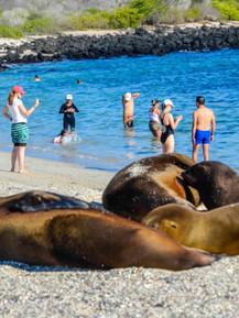 Galápagos - 7.jpg