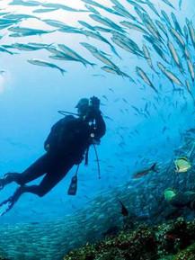 Galápagos - 9.jpg