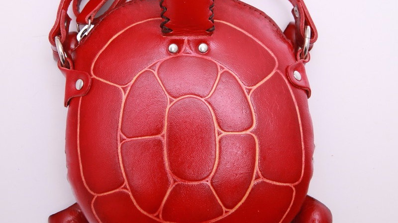 Small Green Turtle Bag