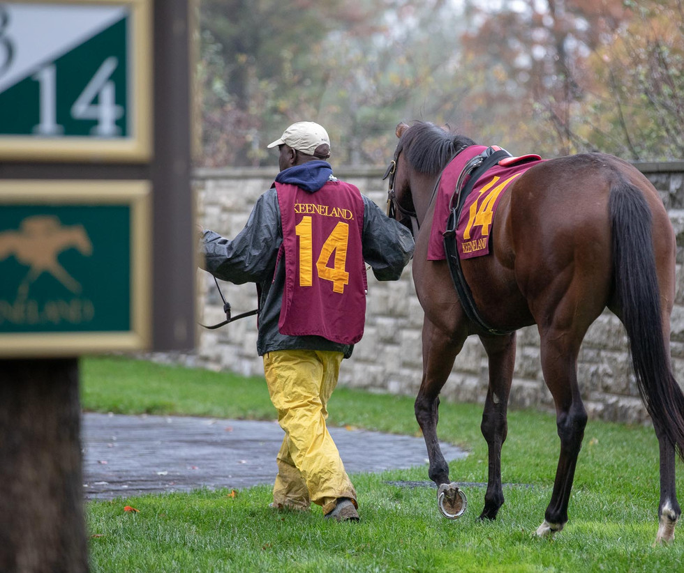 Lena waits in the paddock as a horse she bred prepares to race at Keeneland on Oct. 26, 2018.