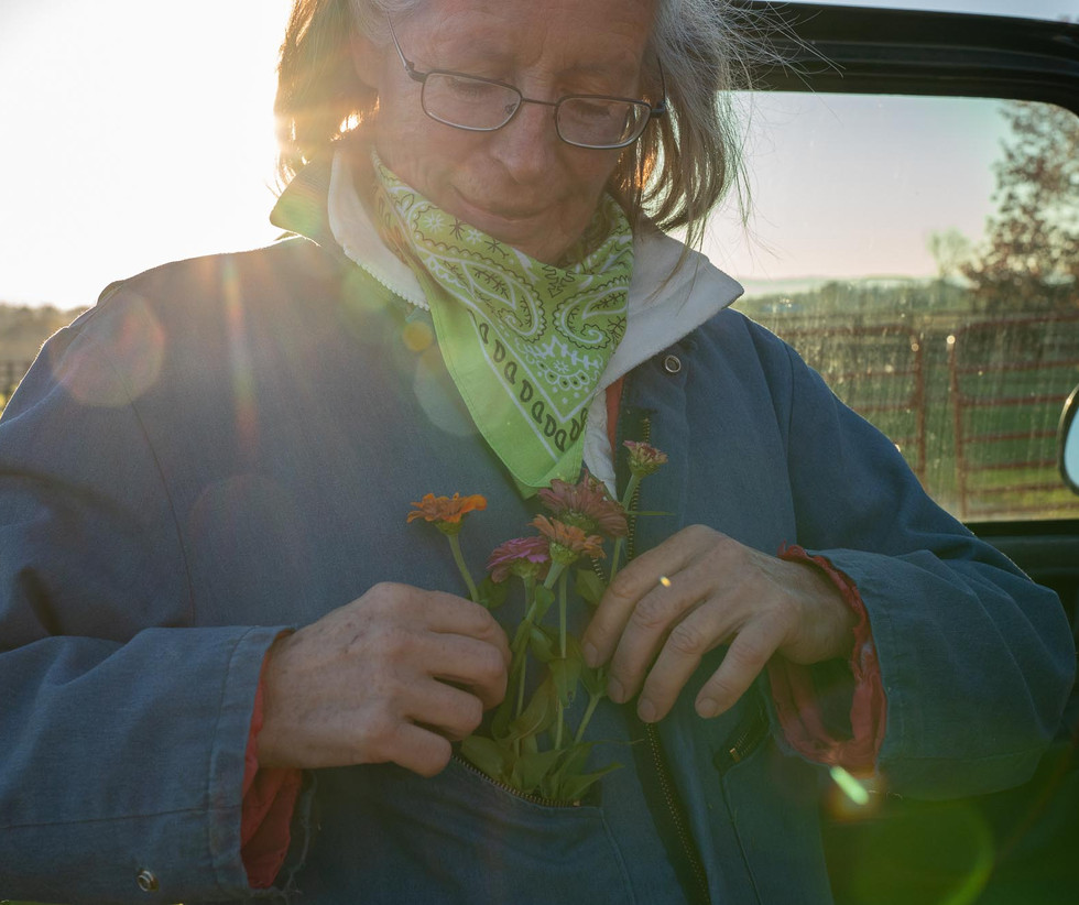 Lena enjoys decorating her farm with a variety of plants. She places a few zinnias in her pocket while doing morning chores.