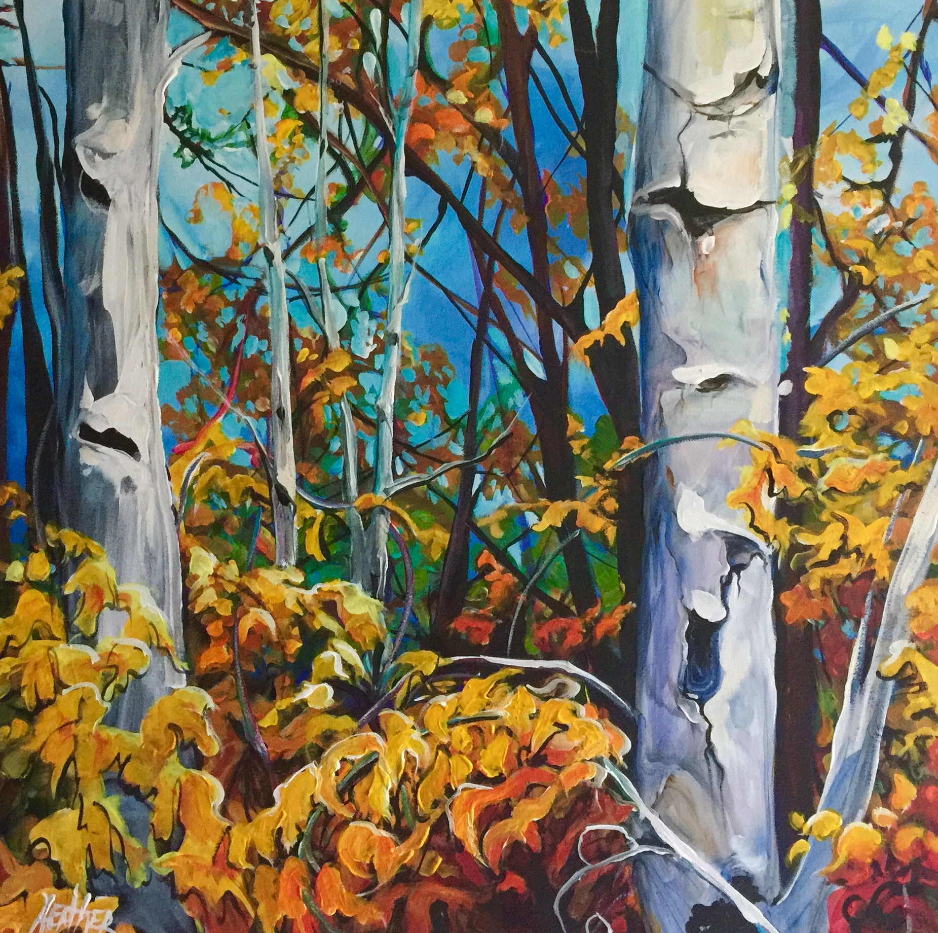 Among the Birch 24 x 24 $1800