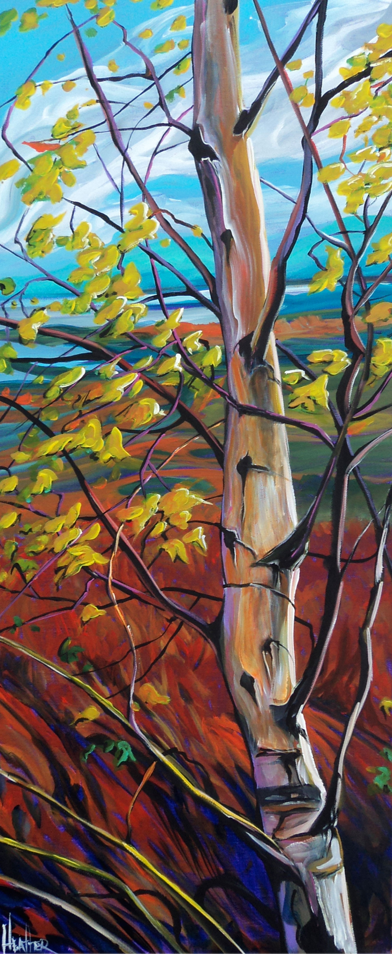 Windstruck Birch 16 x 40...SOLD