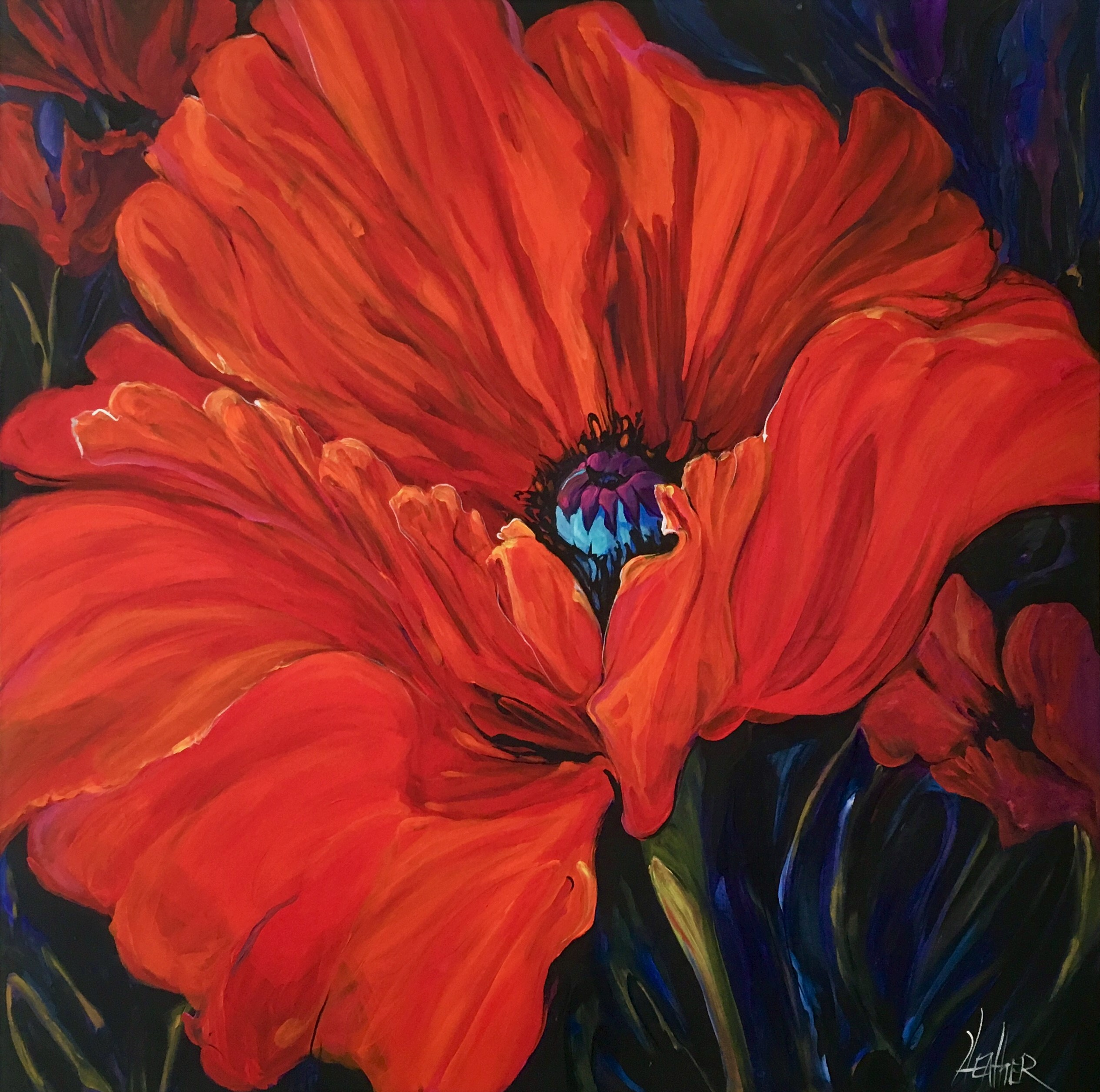 The Poignant Poppy a Study 36 x 36
