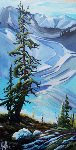 Storm Mountain 15 x 30...SOLD