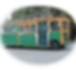 lakecomotrolley7.jpg