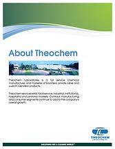 About Theochem