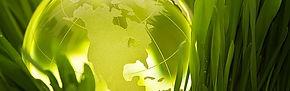 Earth Friendly, Mothernature, Green, Go green, Environment, Clean