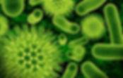 Disinfectants, sanitizer, hospitals, schools, kitchens, effective,
