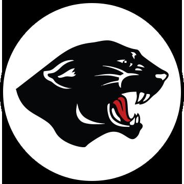 nc panther logo.png