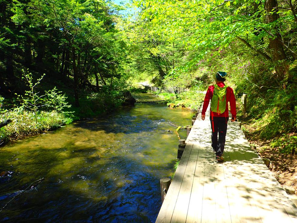 Trecking Senjyogahara