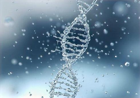 合成界面活性剤を使用せず  界面活性剤を使用せず、水結合分子20数個を水分子2~3個にする