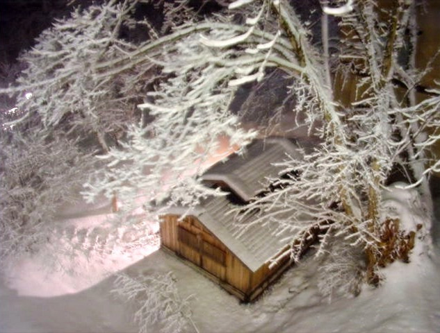 冬の大丸あすなろ荘