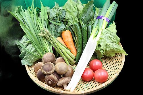②天栄産春野菜セット