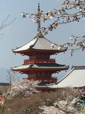 יפן טיול