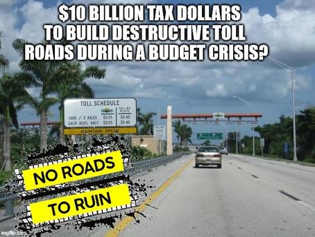 New Toll Roads Will Kill Wildlife
