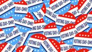 Voting DAY-SMR