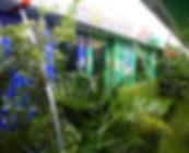 f8bc126e4b2319a866d204_edited.jpg